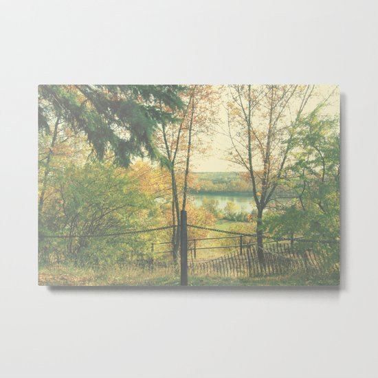 Another gorgeous Autumn day Metal Print