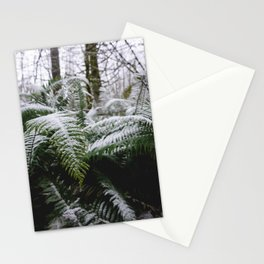 Fern Forest Winter Pacific Northwest Snow III - Nature Photography Stationery Cards