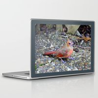 cardinal Laptop & iPad Skins featuring Cardinal by MyLove4Art