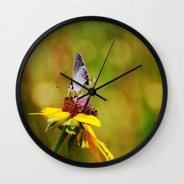 Brown Eyed Susan & Hairstreak Butterfly Wall Clock