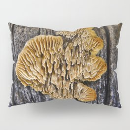 Spores on Wood #1 Pillow Sham
