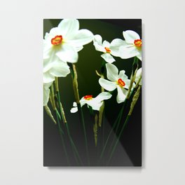 flower dream Metal Print