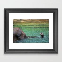snorkeling Framed Art Print