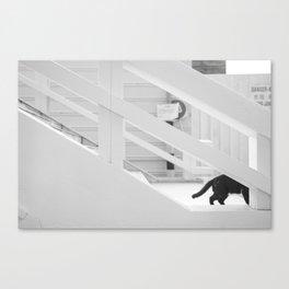 Steath Canvas Print