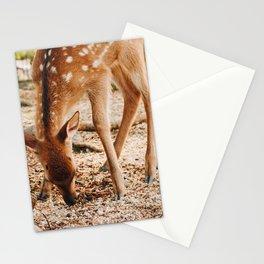 Awfully fawn'd of you! Miyajima Island, Japan Stationery Cards