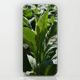 Lush in Green iPhone Skin