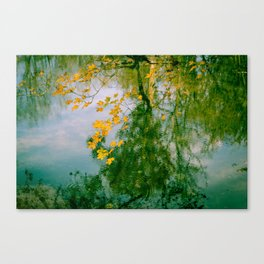Nature Abstract in Autumn Canvas Print