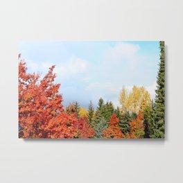 Whistler Fall Colours Metal Print