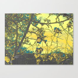 Blossoms Abstract Yellow Canvas Print