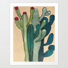 Mexican Cactus Art Print