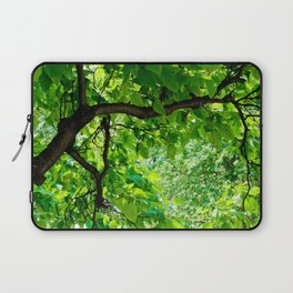 Peek into the Summer Trees Laptop Sleeve