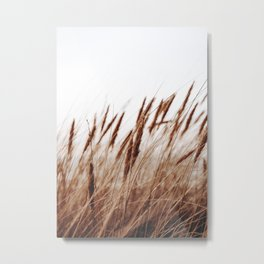 Warm Spikes Metal Print