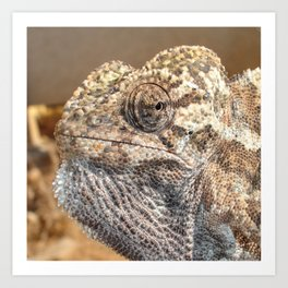 Chameleon With Sinister Facial Expression Art Print