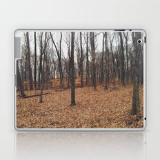 Indiana Forest Laptop & iPad Skin