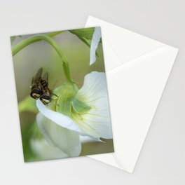 Two Little Hoverflies Stationery Cards
