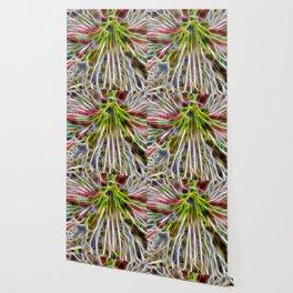abstract glowing amaryllis hippeastrum Wallpaper