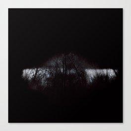 Pimeä 2-4 Canvas Print