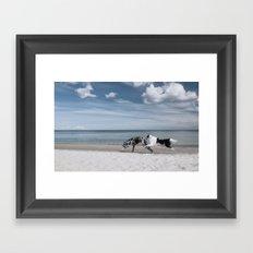 Running dogs at the beach Framed Art Print