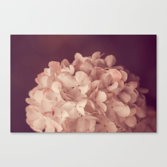 the white ball Canvas Print