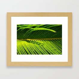 Showered Leaf  Framed Art Print