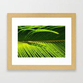 Showered Leaf  Framed Art Print