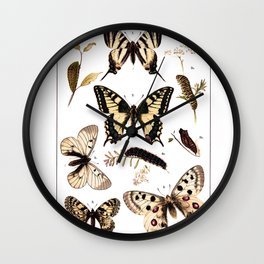 British and European Butterflies and Moths Antique Illustration Wall Clock