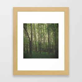 Green Space Framed Art Print