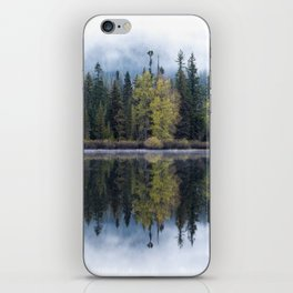 Forest Lake Reflection iPhone Skin