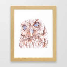 Zeus the Blind Owl Framed Art Print