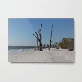 Dead Tree on the Beach Metal Print