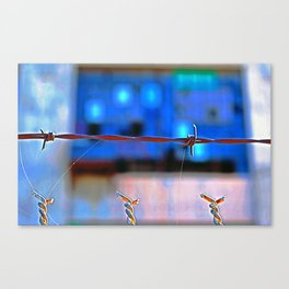 Barbed and Dangerous Canvas Print