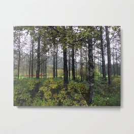 Autumn in Iceland Metal Print