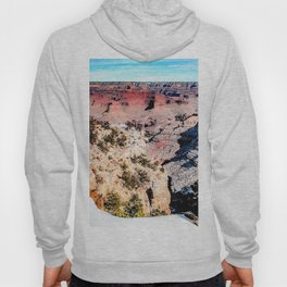 desert at Grand Canyon national park, USA in winter Hoody