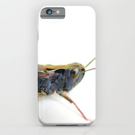 Black grasshopper on white iPhone Case