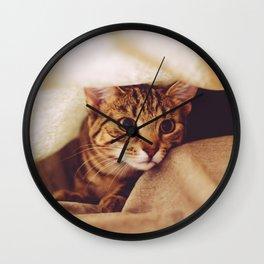hunting cat Wall Clock