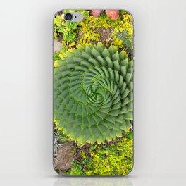 Swirly Succulent iPhone Skin