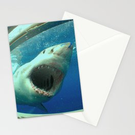 The great white shark, Carcharodon carcharias Stationery Cards