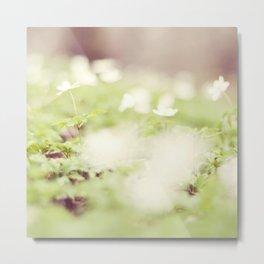 Soft Spring Metal Print