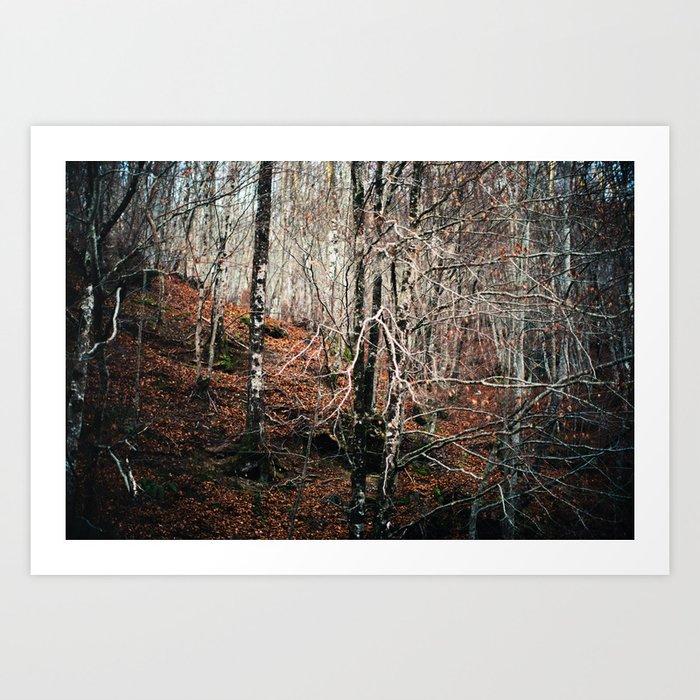 Woods calling Art Print