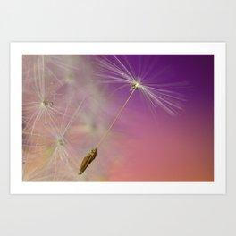 Dandy Purple Art Print
