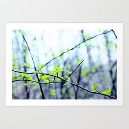 Spring pastel Art Print