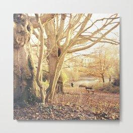 Hampstead Heath Wanderings Metal Print