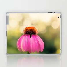 Pink Coneflower Laptop & iPad Skin