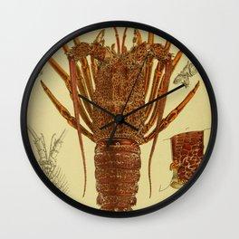 Vintage Lobster Anatomy Diagram (1890) Wall Clock
