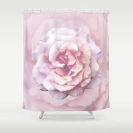 Pink Rose Beauty Shower Curtain