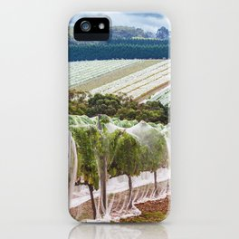 Rows of grape vines protected with bird netting. Beautiful countryside landscape. iPhone Case