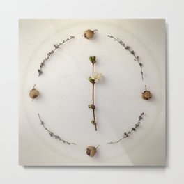 Botanical Circle III Metal Print