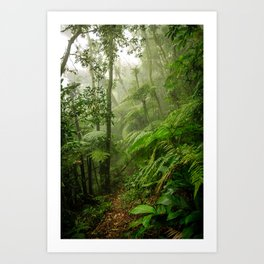 Green way Art Print