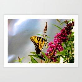 Butterfly Wonderland Art Print