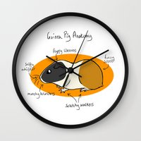 guinea pig Wall Clocks featuring Guinea Pig Anatomy by mausekonig